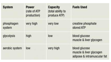 chart-weight-loss-cardio